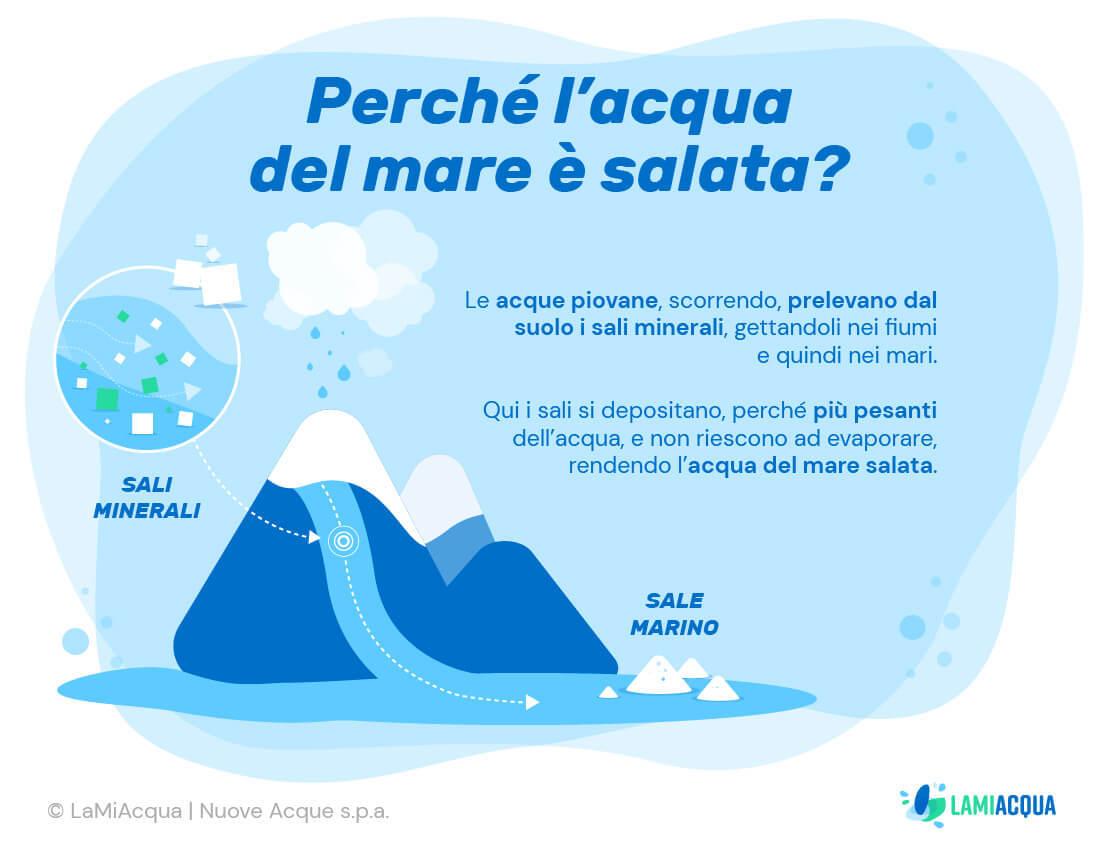 Perche acqua mare salata infografica